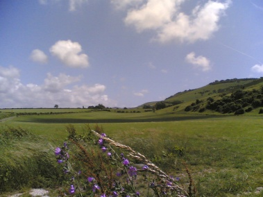 SussexDowns (7)