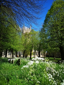 Spring in Bury St Edmunds